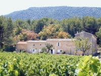 Domaine Faverot