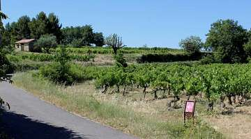 The Winegrower trail of Oppède